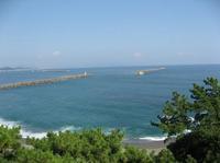 桂浜を望む.jpg