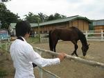 一馬さんと馬.jpg